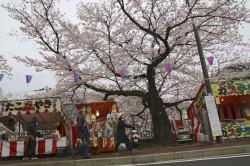 民調:80%台灣民眾 認為日本「讓人親近」