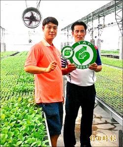 體育教練下田 打造一條龍番茄產業