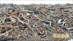 廢物變黑金 尼伯特倒木製生物炭