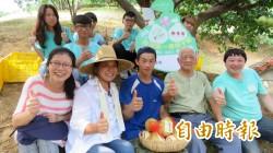 西湖青農文旦柚   將在新東陽國道服務區銷售