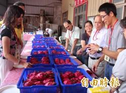 二林紅龍果大賽 百大青農陳佳鈴奪冠