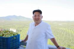 南韓政府證實 北韓副總理遭處決