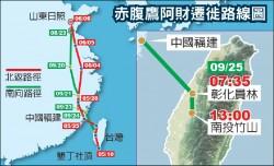 全球首例!衛星追蹤赤腹鷹 遷徙路線全紀錄