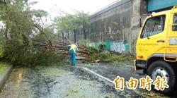 梅姬強襲台南 已清百噸垃圾還未完