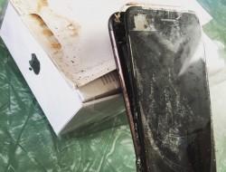 蘋果i7也傳爆炸! 網友酸:三星將提告「仿冒」