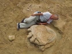 超大! 蒙古戈壁發現106公分恐龍腳印
