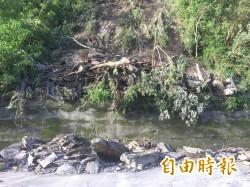 知本溫泉山壁崩坍 194縣道單線通行