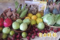 農產也分藍綠?中國踩線團稱:承認九二共識將優先進口