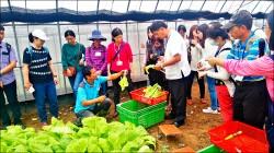竹縣10校營養午餐 明年起吃有機菜
