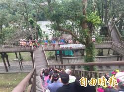 原民歌舞山林間   知本森遊區音樂會好特別!