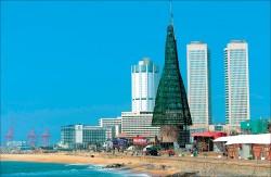 斯里蘭卡百公尺人造耶誕樹 縮水剩57公尺