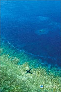澳洲大堡礁連2年白化 近7成遭殃