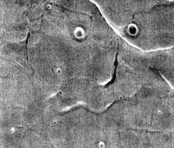 NASA釋出火星表面照 猶如一張詭異人臉