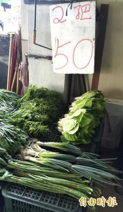 2月內漲4倍 青蔥3公斤要400元 高雄民眾喊抓菜蟲