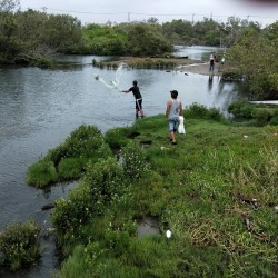 濕地公園禁釣沒人理 釣魚、撒網勸不聽