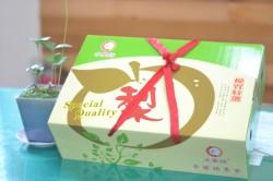 「卓蘭梨兒甜~葡萄香」農產活動週末登場 主題水果免費品嚐