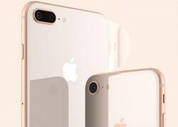 iPhone 8預約狀況分析 Plus版仍是消費者最愛
