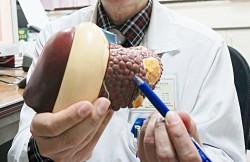 《愛肝加油站》肝實質病變 需找出原因