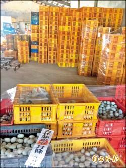 鹹蛋黃含致癌物 永信蛋鴨場暫停出貨