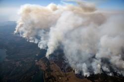 北加州驚見近千公里濃密煙流 鄭明典:這種火太嚴重了