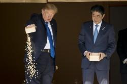讓錦鯉再次偉大! 川普日本餵魚照引發熱議