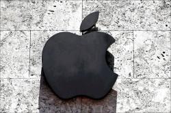 中國供應商︰未收到蘋果砍單通知