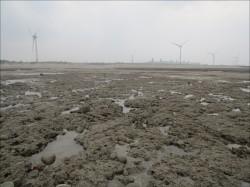 安永報告︰土地、環評卡關 大型投資案卻步