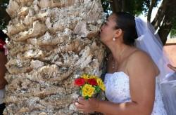 墨國人集體與「樹」結婚 男影星籲重視環境保護