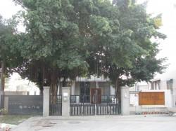 全國第一個 「台南考古中心」319揭牌