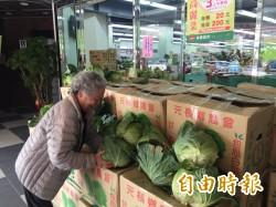 北農休市惹禍 東縣農會義賣高麗菜助農民「保本」