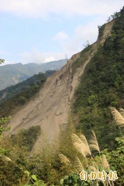 南庄鹿湖山區走山嚴重 路斷難搶修影響桂竹筍採收