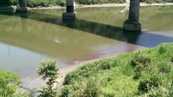 抓到了!環保局查獲廠商偷排廢水污染基隆河