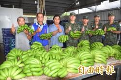 搶救賤價傷農 陸軍八軍團撥加菜金採購水果
