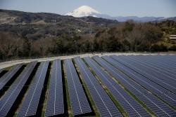 東京奧運拚環保 賽場、奧運村全用再生能源供電