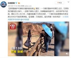 中國沒品女遊客踩古化石拍照 代價「一個腳印需60年恢復」
