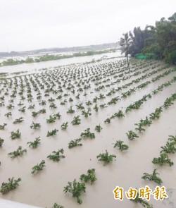 連2年襲台豪雨與颱風 9成在地層下陷區
