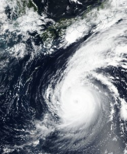 燕子颱風襲日 數百架航班停飛、列車停駛