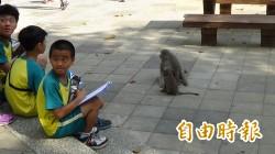 高雄首所公辦實驗小學開學 師生親近獼猴