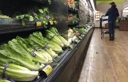 美國蘿蔓生菜出問題 食藥署研議管制措施
