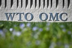 打擊中國不公平競爭!美貿易代表:美國將引領WTO進行改革