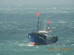 中國漁船侵門踏戶!澎湖南方四島珊瑚 慘遭滾輪拖網破壞