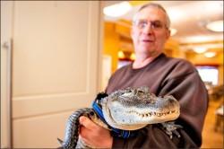 養鱷魚戰勝憂鬱