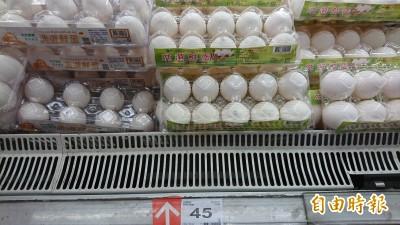 疫苗出包? 疑百萬蛋雞染病暴斃 恐成「蛋荒」主因