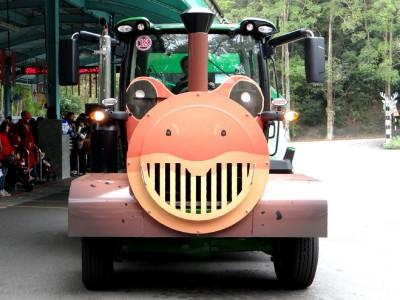 卡哇伊!北市動物園「穿山甲」、「箭毒蛙」列車 上線載客