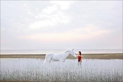 【台灣好好玩】2019漁光島藝術節 台南安平秘灘化身地景樂園