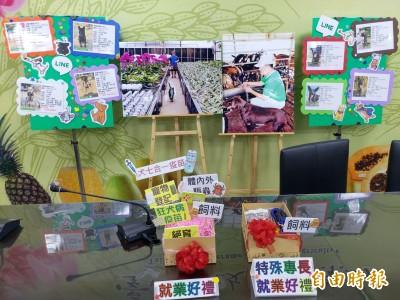 台南首創 為毛小孩職訓、就業輔導