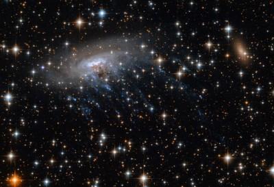 驚!NASA在外太空發現超巨大「水母」