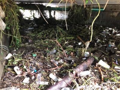 平均1公尺清1噸? 韓國瑜的清淤數字遭網友質疑