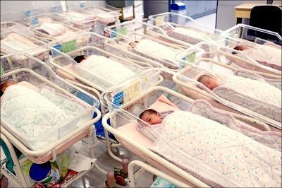 少子化加劇 上半年新生兒僅8.5萬