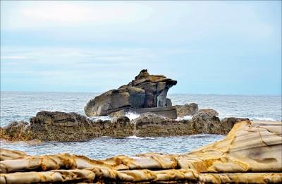 【新開放秘境】屏東溪仔口生態保護區 海角迎來驚奇地景